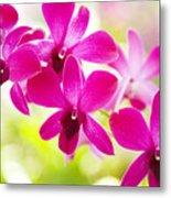 Pink Orchid Lei Metal Print