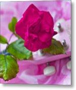Pink Rose 5 Metal Print