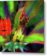 Plants And Flowers In Hawaii Metal Print
