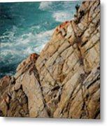 Point Lobos California Metal Print