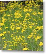 Pretty In Yellow Metal Print