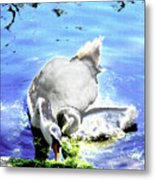 Psychedelic Mute Swan And Cygnet Feeding Metal Print