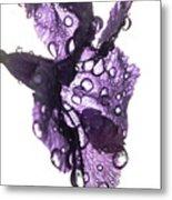 Purple Rain Metal Print