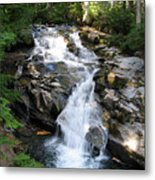 Rainier Waterfall Metal Print