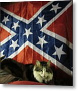 Rebel Cat Metal Print