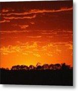 Red Arkansas Metal Print