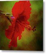 Red Hibiscus Art Metal Print