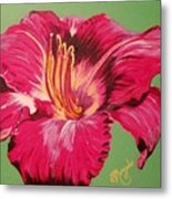 Red Lily Valley Metal Print