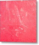 Red Plastic Metal Print