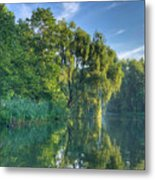 Reflections Of A Weeping Willow Metal Print