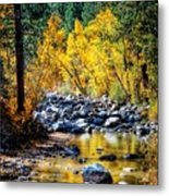 Reflections Of Gold Metal Print