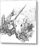 Reggie The Rat Metal Print