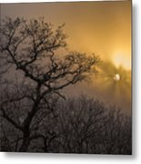 Rime Ice And Fog At Sunset - Telephoto Metal Print