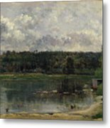 River Scene With Ducks Metal Print