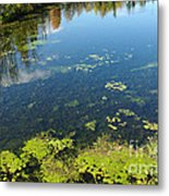 River Water Pollution Metal Print