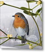 Robin On Mistletoe Metal Print
