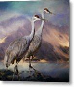Rocky Mountain Sandhill Cranes Metal Print