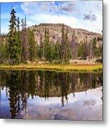 Ruth Lake Trail Metal Print
