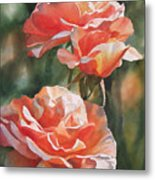Salmon Colored Roses Metal Print by Sharon Freeman