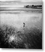 San Clemente Pier Metal Print by G Wigler