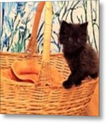 Sassy Cat Metal Print