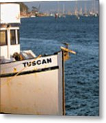 Seagull Morro Bay California Metal Print