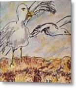 Seagull Salute Metal Print