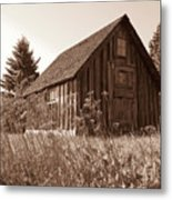 Shack At Stoney Point Metal Print