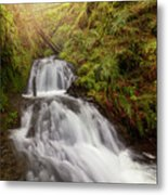 Shepperd's Dell Falls Metal Print