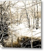 Snow-covered Stream Banks, Pennsylvania Metal Print