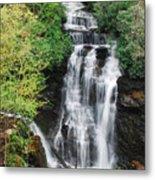 Soco Falls Metal Print