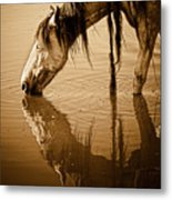 Somewhere West Of Laramie Metal Print by Ron  McGinnis