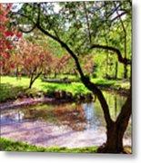Spring At Tappan Park Pond Metal Print