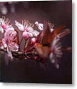 Spring Beauty- 2 Metal Print