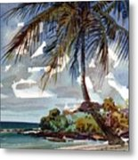 St. Croix Beach Metal Print