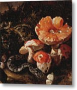 Still Life With Serpents, Fly Agarics And Thistles Metal Print