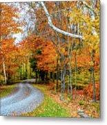 Stone Autumn Road Metal Print