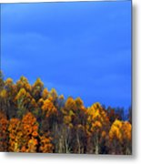 Stormy Sky Last Fall Color Metal Print by Thomas R Fletcher