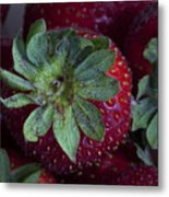 Strawberry 2 Metal Print