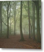 Stunning Colorful Moody Vibrant Autumn Fall Foggy Forest Landsca Metal Print