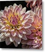 Sun And Flowers Metal Print
