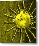 Sun Tool Metal Print