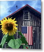 Sunflower By Barn Metal Print