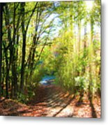 Sunny Autumn Path Metal Print