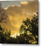 Sunset Glow Metal Print