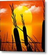 Sunset Lake Metal Print by Robert Orinski