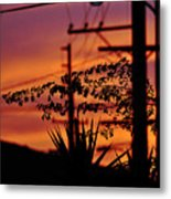 Sunset Sihouettes Metal Print