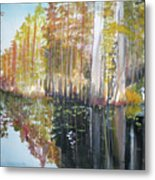 Swamp Reflection Metal Print