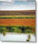Swamp With Birds Landscape Autumn Season Metal Print