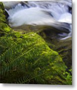 Sweet Creek Oregon 11 Metal Print